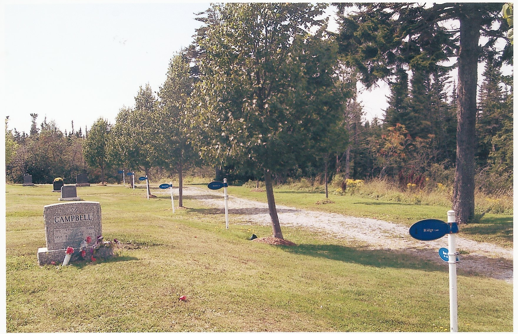 Access Roads01 (9)