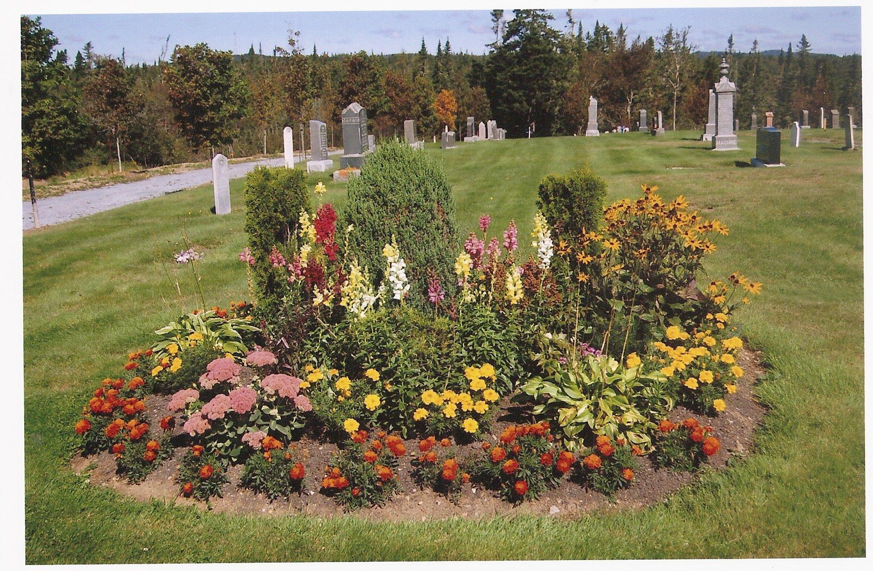Flower beds 5
